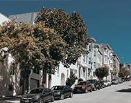 cars-line-up-roadside
