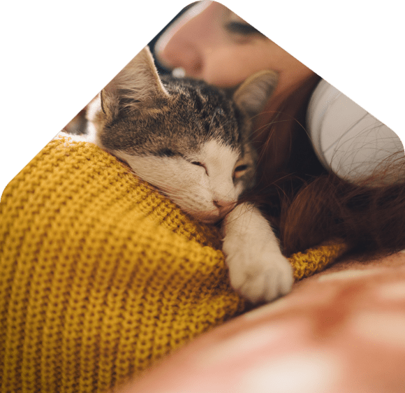 renters feeling relax with pet cat