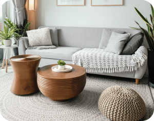 livingroom view with nice carpet and plants