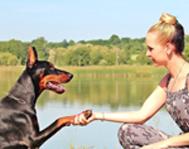 seattle-washington-animal-shelter-dog-girl