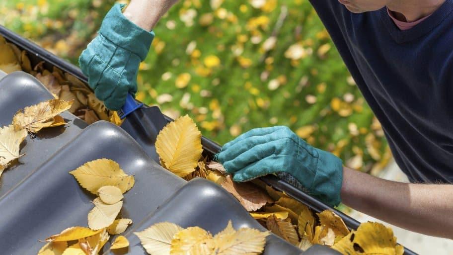 Image result for san francisco gutter clean